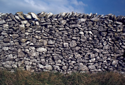 Tall field wall